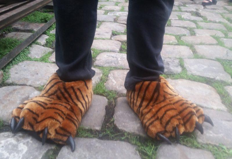 se former en chaussons